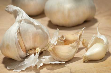 Top 10 Highest Garlic Producing Countries