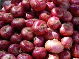Top 10 Highest Onion Producing Countries