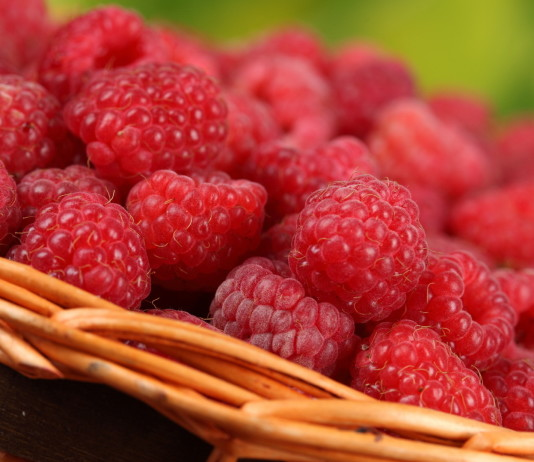 Top 10 Highest Raspberry Producing Countries