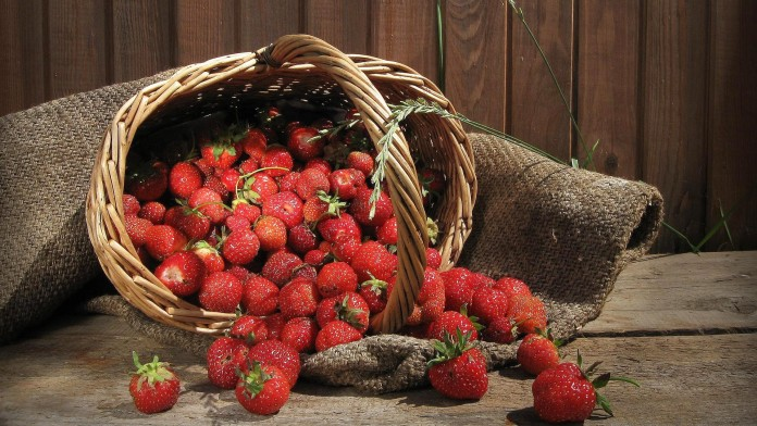 Top 10 Highest Strawberry Producing Countries