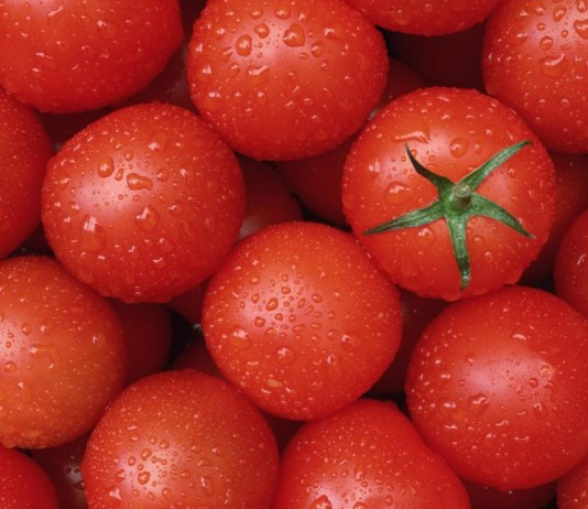 Top 10 Highest Tomato Producing Countries