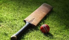 Top 10 T20 Cricket Team