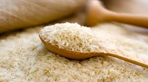 Top 10 Highest Rice Producing Countries
