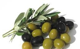 Top 10 Highest Olives Producing Countries